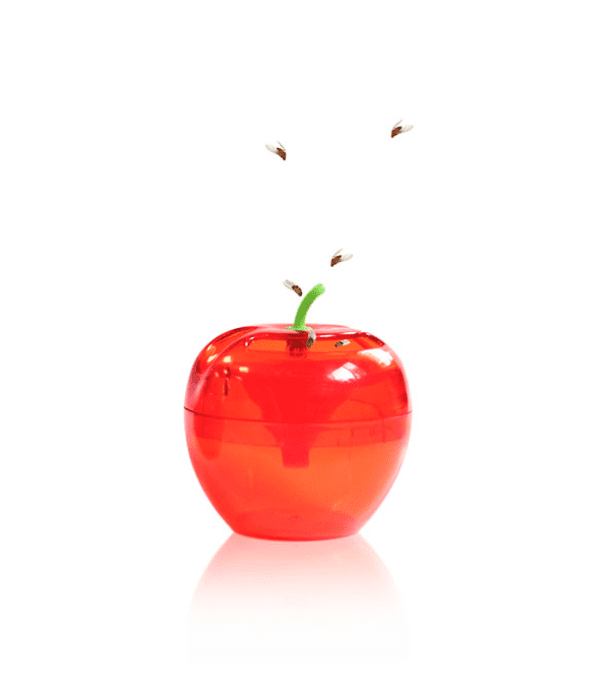 PIC fruit fly trap
